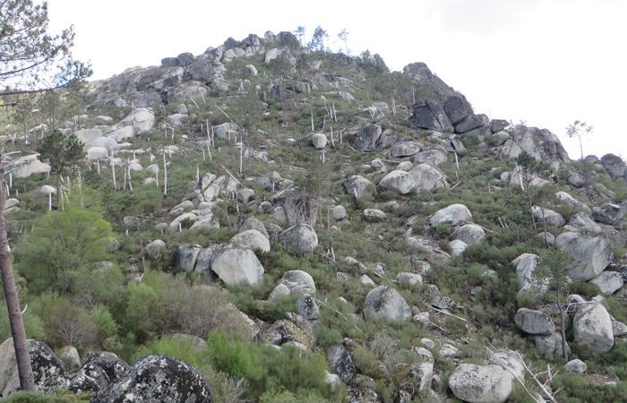 Vista al inicio del camino de vuelta Ruta del Jabalí