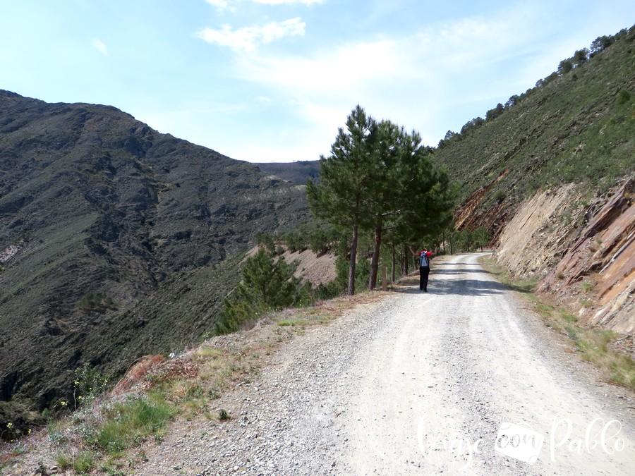 Pista que nos conducirá a la presa de Majá Robledo durante dos kilómetros
