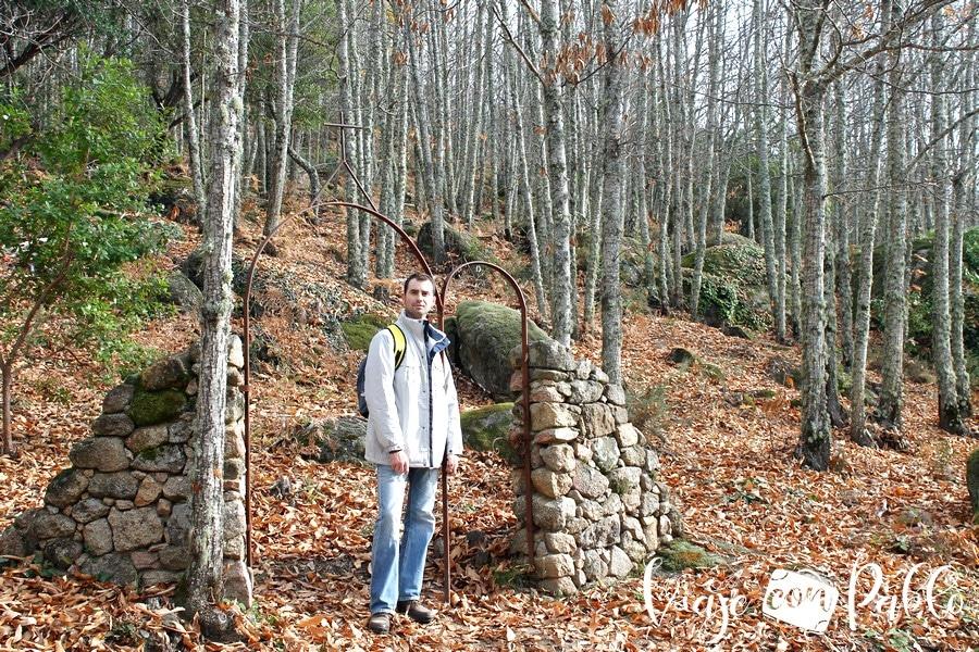 Paisaje otoñal de la ruta del Bosque de los Espejos