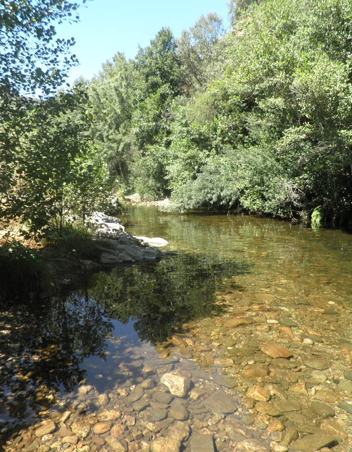 Alrededores de la piscina natural de Las Mestas en el rio Ladrillar