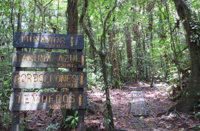 Indicaciones en el sendero tras la visita a la catarata de Río Celeste