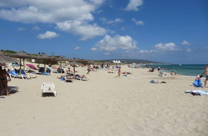 Hamacas y sombrillas en la playa de Migjorn Playas de Formentera