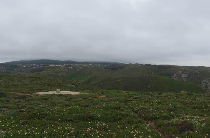 Vegetación del Cabo da Roca