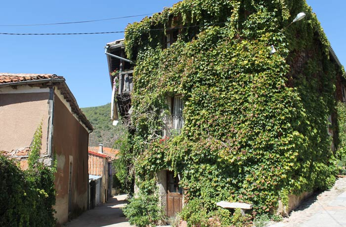 Casa cubierta por hiedra en San Esteban de la Sierra senderismo en Salamanca Miradores de las Sierras