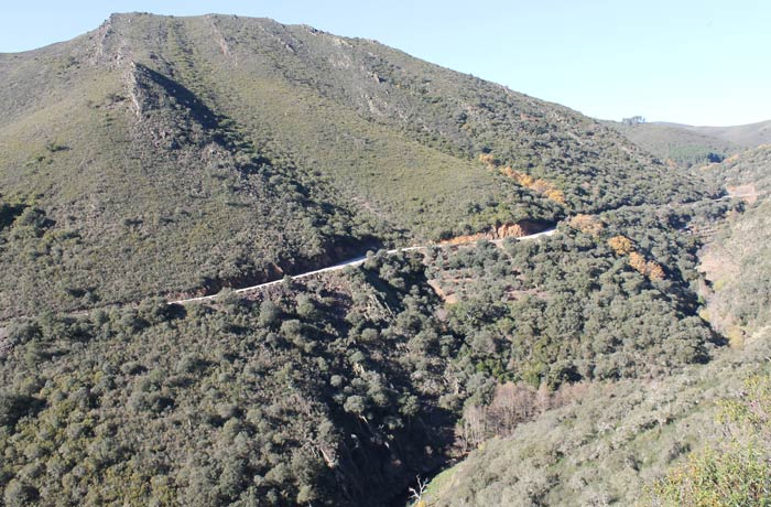 Vista de la carretera que uno las Puentes del Alagón con Valero Camino de los Trasiegos