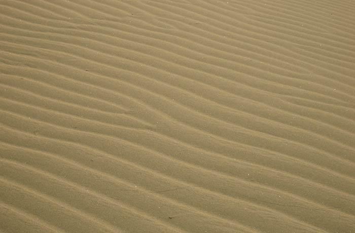 Detalle de los surcos en la arena de las Dunas de Maspalomas