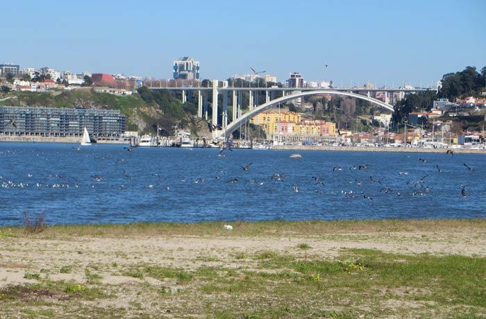 Puente de la Arrábida desde el Estuario del Duero