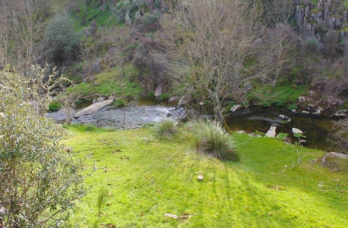 Ribeira de Lamoso al inicio de la ruta cascadas en Portugal