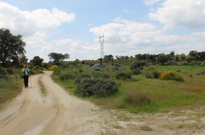 Lugar en el que se deja el tramo común con la Senda del Duero y se continúa la ruta hacia la carretera
