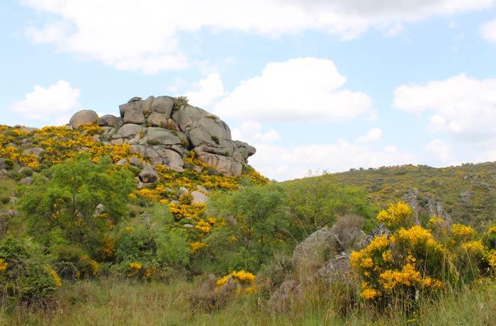 Rocas con formas caprichosas en la ruta Cascada de Abelón