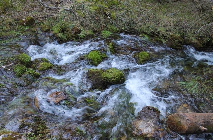 Bella estampa del agua corriendo tres el musgo de las rocas