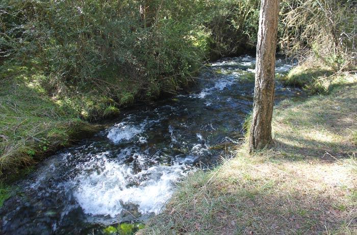 El curso del río Cuervo, al poco de nacer