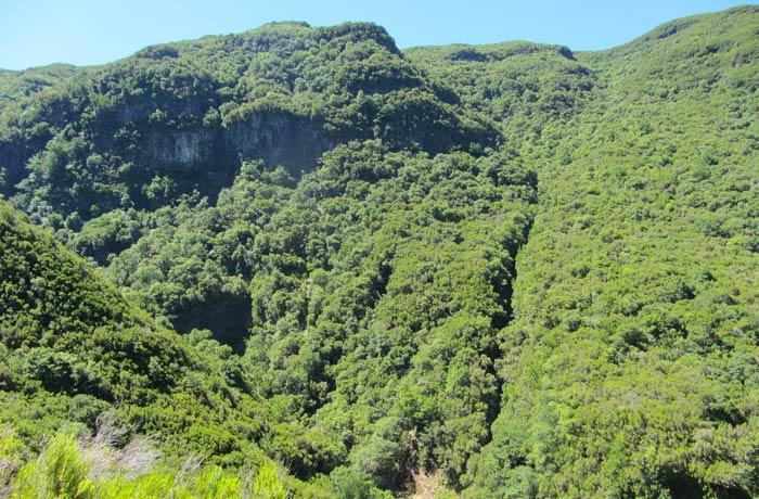 Paisaje típico madeirense en la ruta de la Levada das 25 Fontes Una semana en Madeira