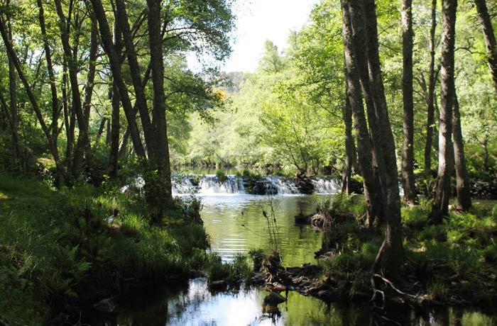 Pesquera en el río Coa ruta en Sabugal