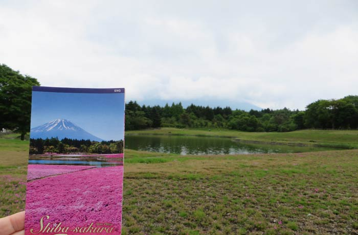 Lo único que la niebla nos dejó ver del Monte Fuji Japón por libre