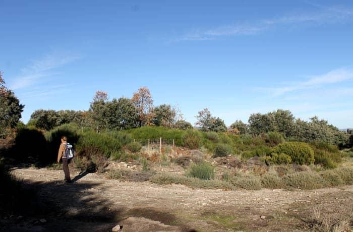 Punto exacto en el que se enlaza con el PRSA-14, el camino entre La Alberca y Herguijuela Portilla Bejarana