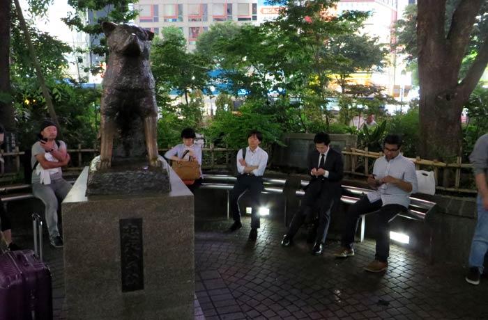 Estatua de Hachiko y japoneses consultando el móvil cruce de Shibuya