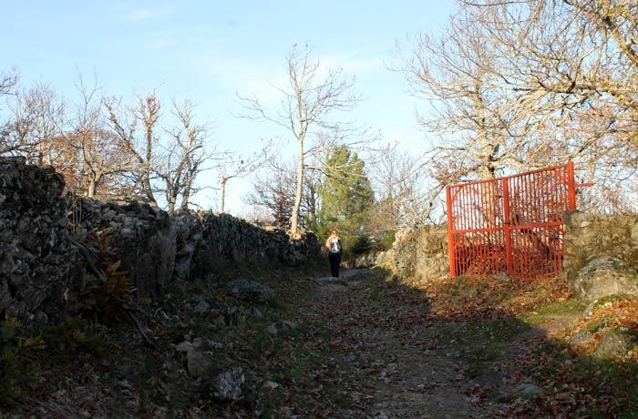 Senda de los Cortinales, en el tramo final de la ruta Portilla Bejarana