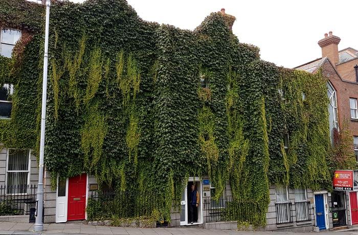 La hiedra inunda la fachada de este edificio dublinés Dublín en un día