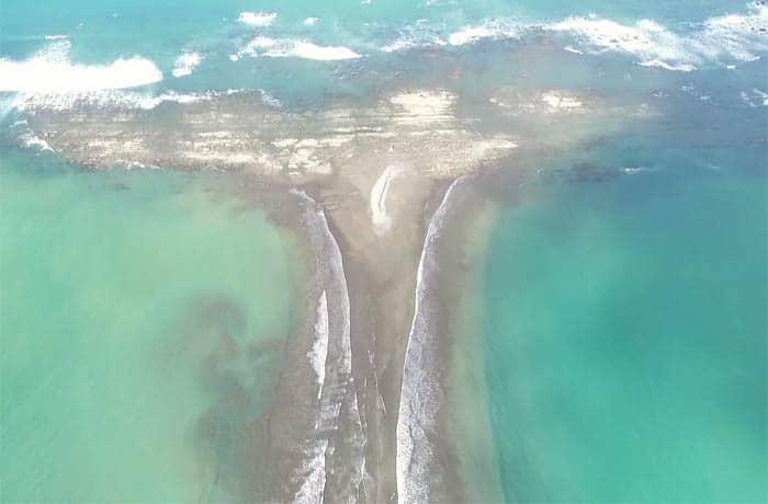 Cola de ballena en una captura del vídeo elaborado con dron por Paco Nadal