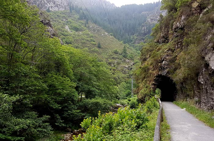 Uno de los túneles de la Senda del Oso