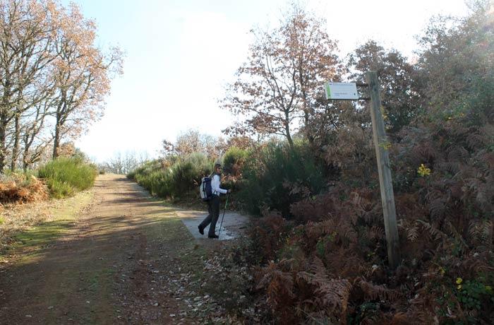Desvío a la derecha en el camino de La Bastida para tomar el sendero Cueva de la Mora