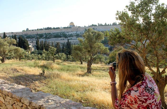 Olivos del Monte de los Olivos con la ciudad vieja al fondo qué ver en Jerusalén