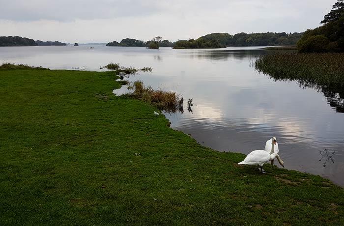 Lago Leane Anillo de Kerry