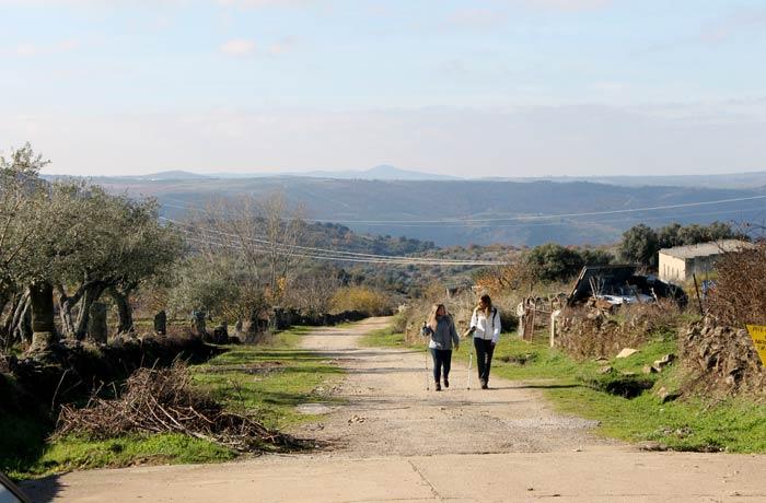 Camino que conduce al Pozo Airón nada más salir de Pereña de la Ribera