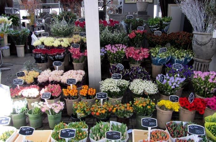 Mercado de las flores Ámsterdam en tres días