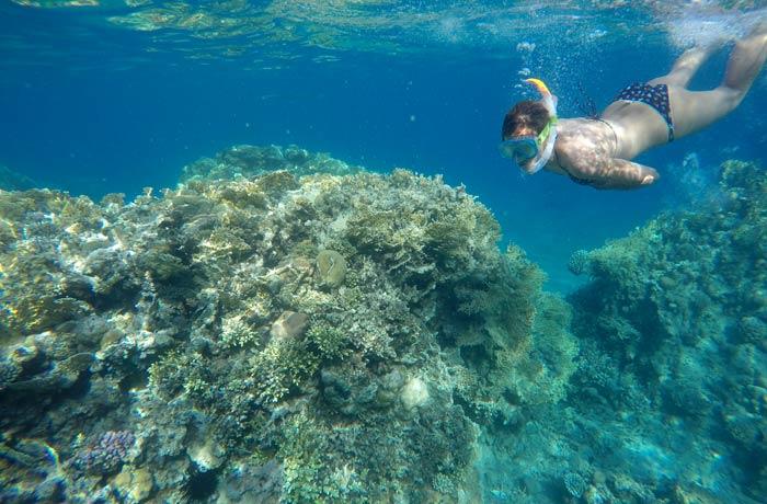 Estefanía observando los corales del mar Rojo qué hacer en Eilat