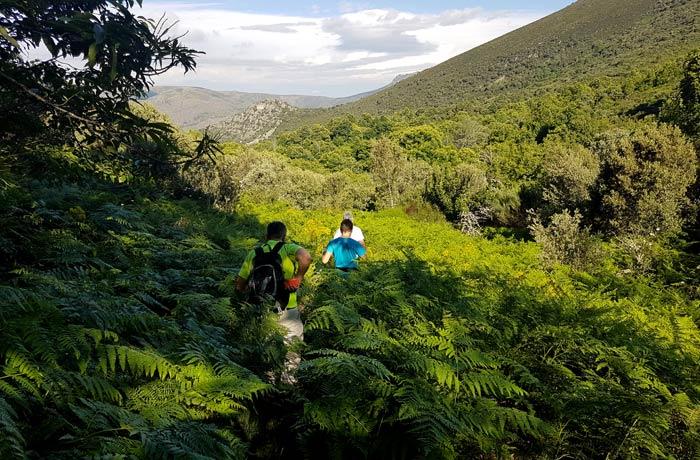 Inicio de la ruta a la chorrera de Jigareo