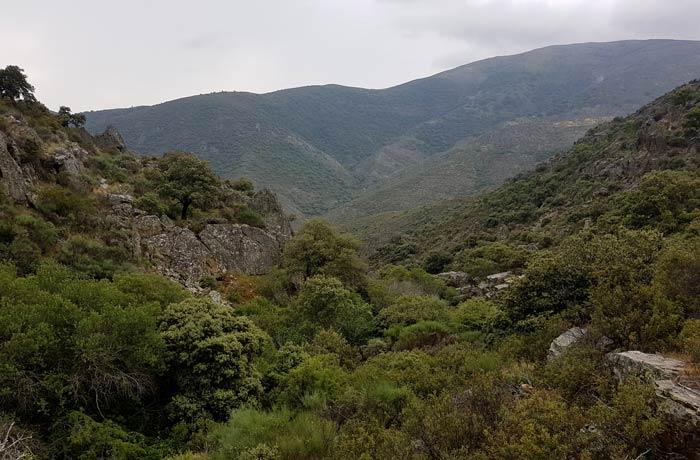 El pico del Castillo antes de la última bajada a la chorrera de Jigareo