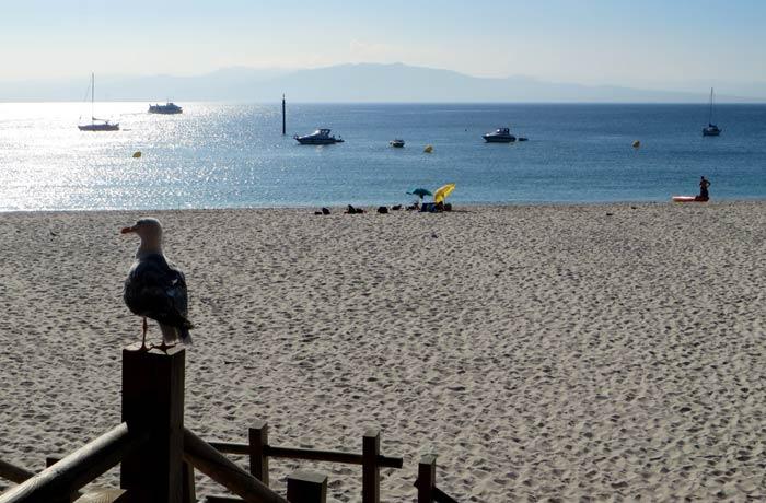Vista de la playa de Rodas a primera hora de la mañana que hacer en las Islas Cíes