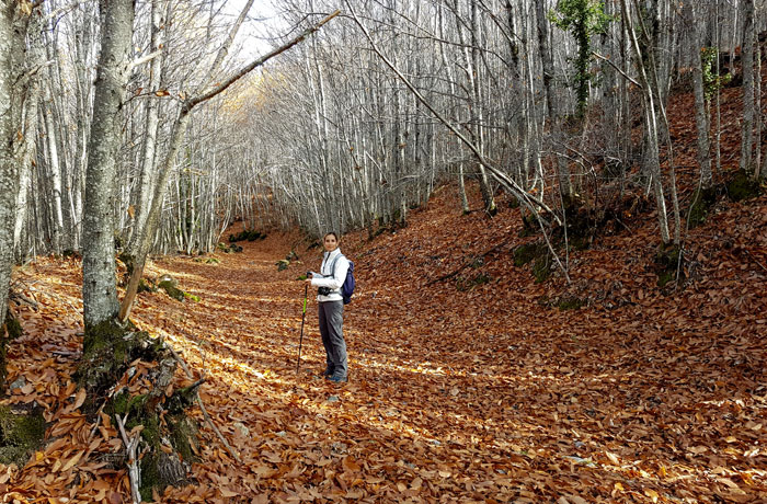 Estefanía sobre el manto de hojas