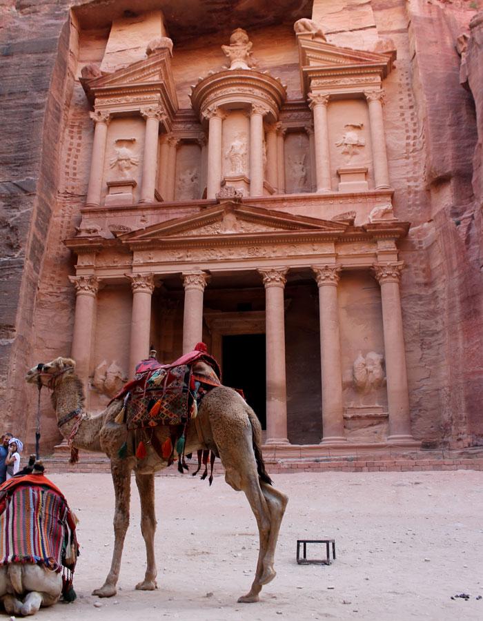 Camello frente al Tesoro que ver en Petra