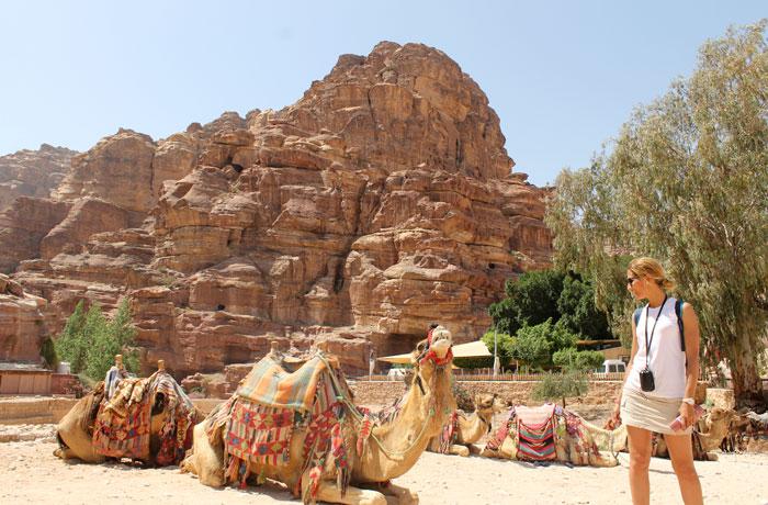 Camellos que ver en Petra