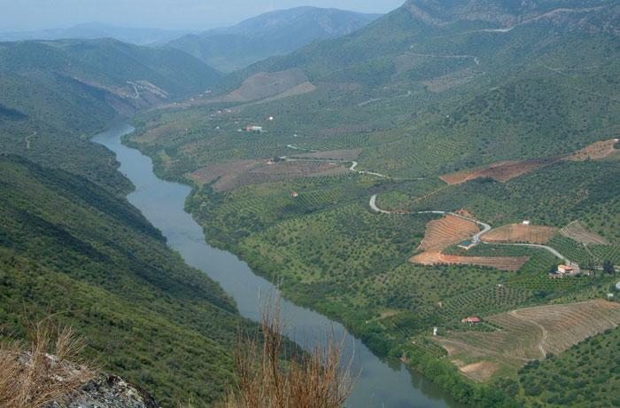 Vistas desde la Peña la Vela en Hinojosa de Duero