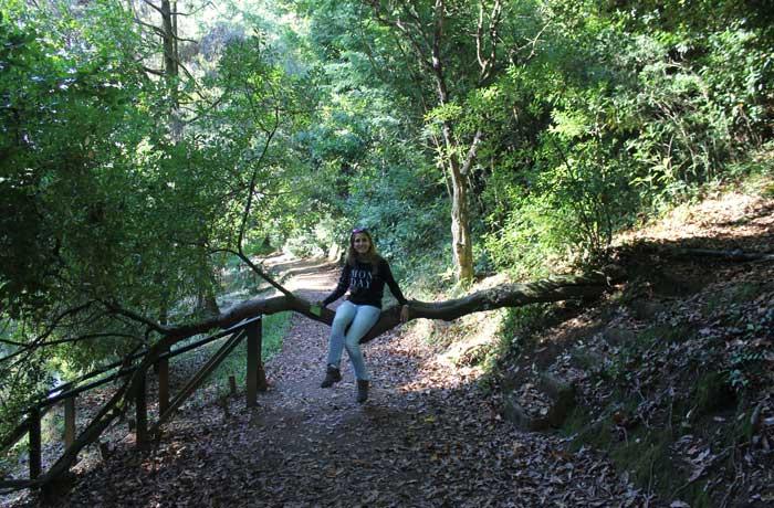 Estefanía sobre uno de los árboles cruzado en un sendero
