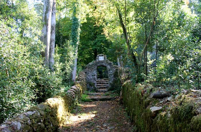 Uno de los senderos del bosque de Bussaco