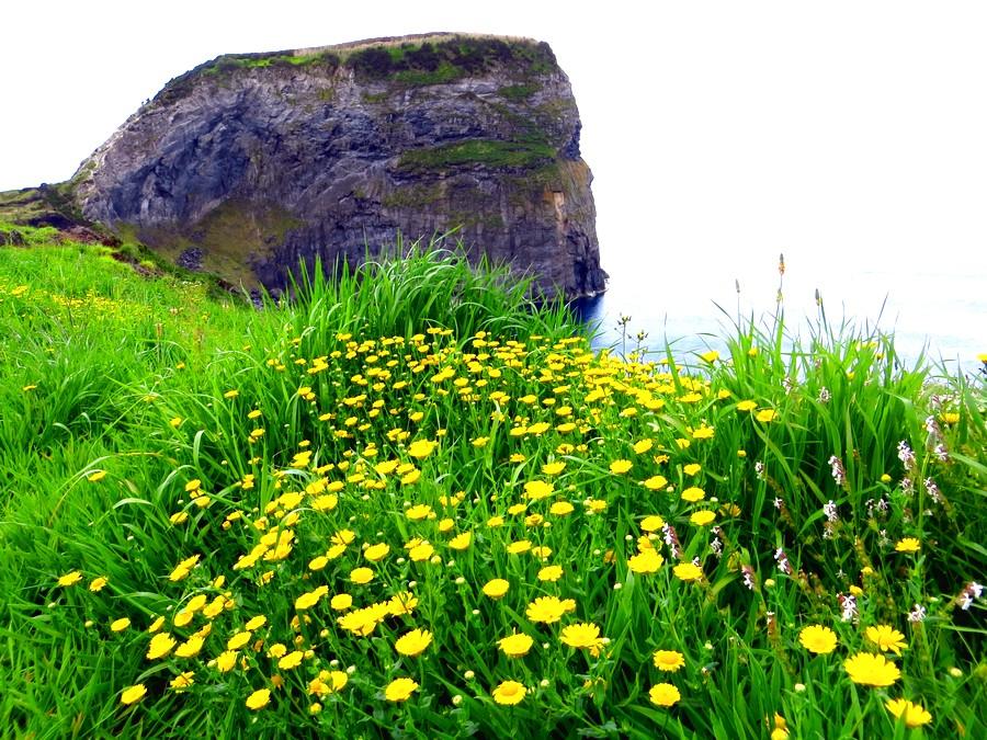 Un paisaje de la isla de Faial