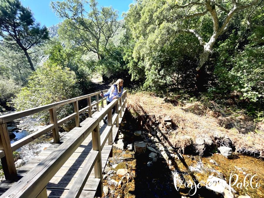 Puente de madera sobre el arroyo del Cabril