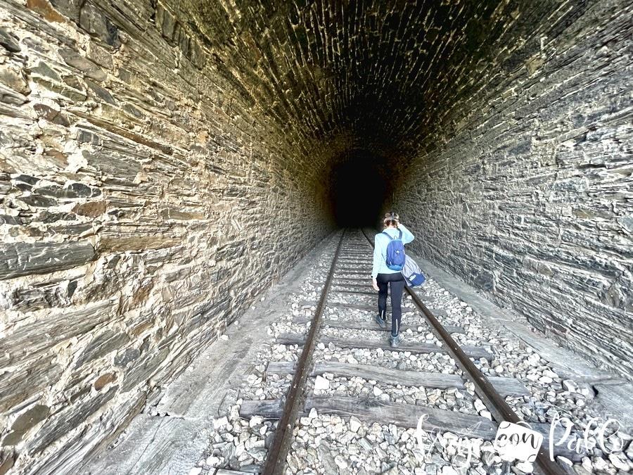 Uno de los túneles del Camino de Hierro