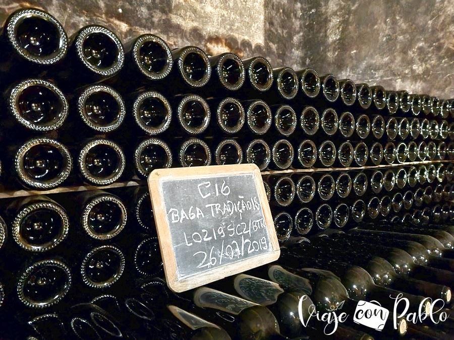 Botellas colocadas en las galerías de las Caves Messias