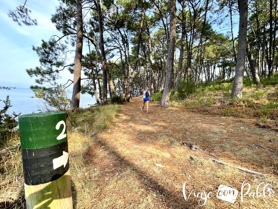 Balizas del sendero autoguiado para visitar Cortegada